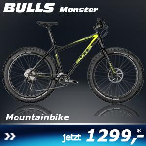 Bulls Monster