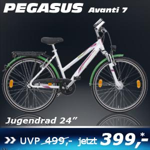 Pegasus Avanti Trapez weiss 24