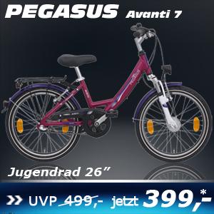 Pegasus Avanti Uno Lila 26