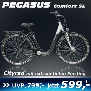 Pegasus Comfort SL