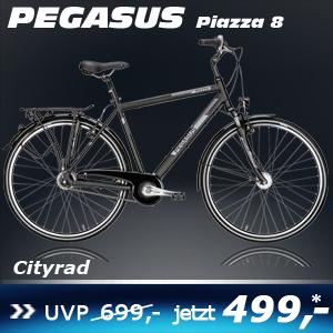 Pegasus Piazza 8 Herren