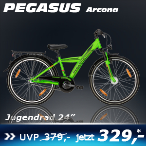 Pegasus Arcona jungs grün 24