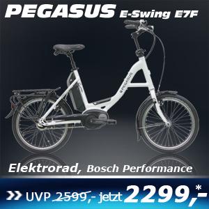 Pegasus E-Swing E7F 17