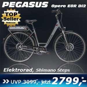 Pegasus Opero E8R DI2 Uno Grau 17