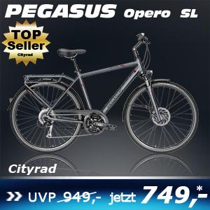 Pegasus Opero SL He grau 17