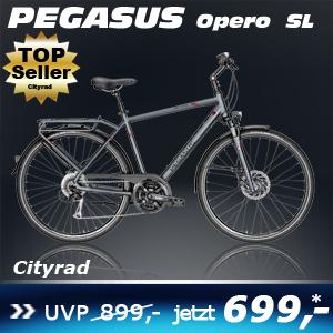 pegasus-opero-sl-he-grau-17