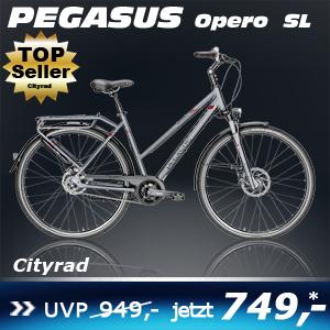 Pegasus Opero SL Trap grau 17