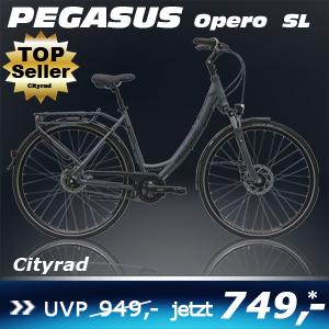 Pegasus Opero SL Uno grau 17