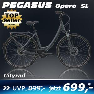 pegasus-opero-sl-uno-grau-17