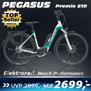 pegasus-premio-e10-wave-weiss-17