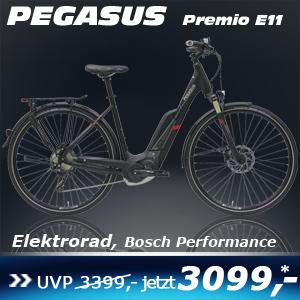 Pegasus Premio E11 Wave 17