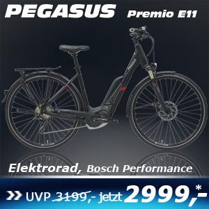 pegasus-premio-e11-wave-17
