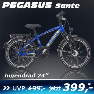 Pegasus Sante Blau 24 16