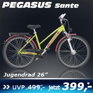 Pegasus Sante Trap Grün 16