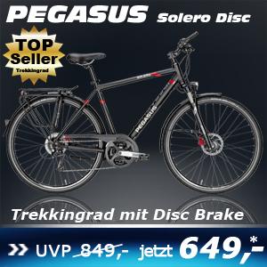 Pegasus Solero Disc Herren 17