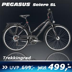 Pegasus Solero Sl He 17