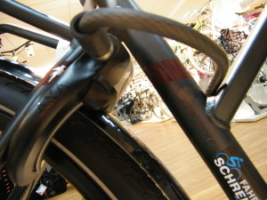 Pegasus Opero E8 Di2 Shimano Steps E-Bike Schloß