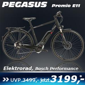 Pegasus Premio E11 He 17