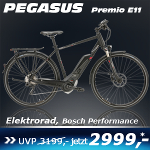 pegasus-premio-e11-he-17