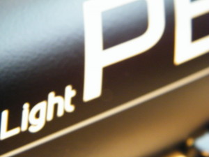 Pegasus Light Dekor