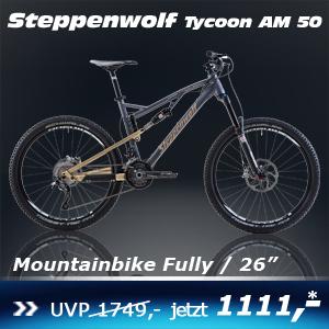 Steppenwolf Tycoon 16
