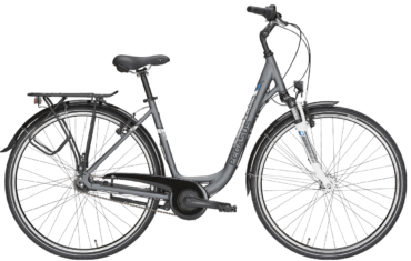 graues Damen Cityrad von Pegasus mit 7 Gg Nabenschlatung mit Uno Rahmen
