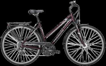 Damen Trekkingrad von Pegasus mit 24 Gang Shimano Schaltung, Trapezrahmen in der Farbe blackberry