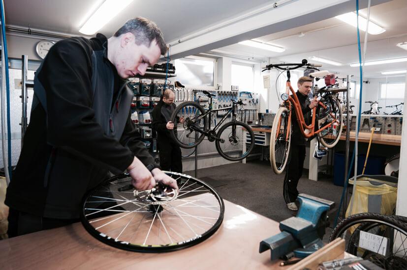 Drei Fahrradmechaniker in der Werkstatt, die reparieren