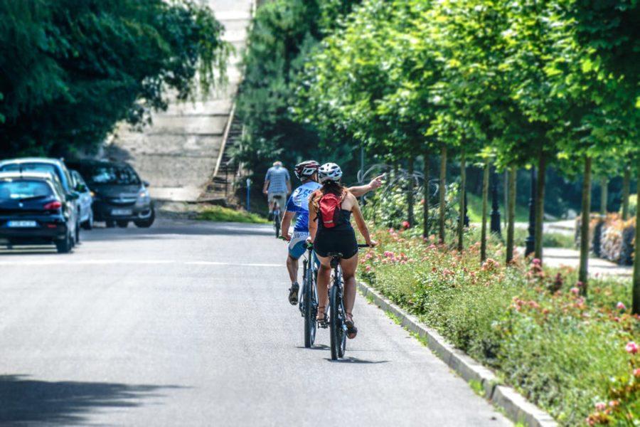 zwei Fahrradfahrer fahren mit Ihren Fahrrädern auf einer Strasse, rechts von Ihnen befinden sich Bäume
