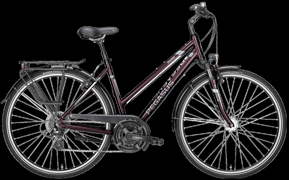 pegasus solero sl fahrrad e bike zentrum schreiber. Black Bedroom Furniture Sets. Home Design Ideas